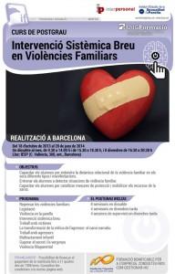 Posgrado Intervencion sistemica breve en violencias familiares