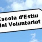Escuela de Verano del Voluntariado