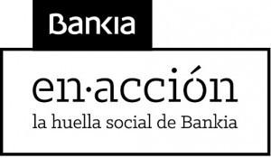 Annex-B-Logo-Bankia-en-Acció-300x175
